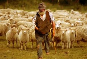 Il Pastore bello